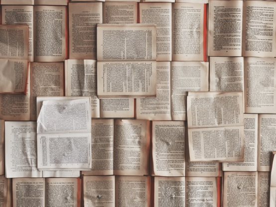 Books That Teach Us How to do Nothing