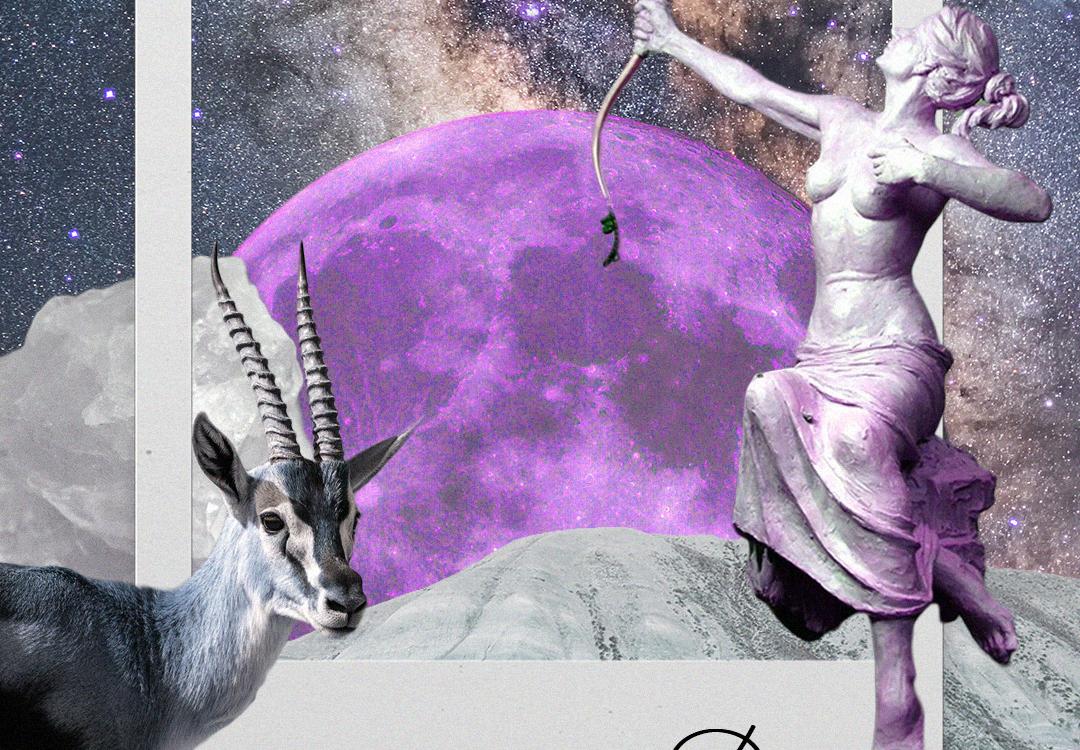 December Horoscopes